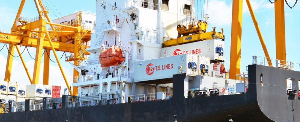 Software facilitates handling of shipments of export cargo and import cargo in international trade.