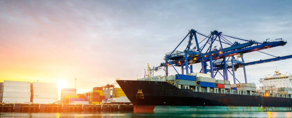 Ocean carrier and intermediaries allegedly violated Shipping Act in handling shipments of export cargo and import cargo in international trade.