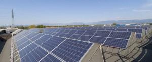 South Carolina Ports Authority Brings Solar Power to Terminals