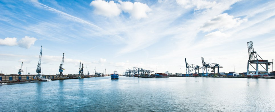 Environmentla cleanup at worldwide ports that handle shipments of export cargo and import cargo in international trade.