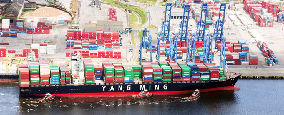 Expansions at port of Wilmington, NC, allows handling of more shipments of export cargo and import cargo in international trade.