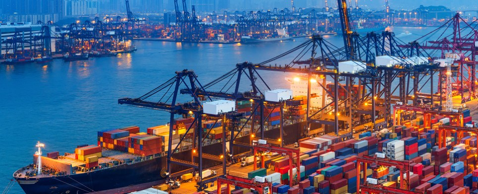Sftware that helps manage shipments of export cargo and import cargo in international trade.