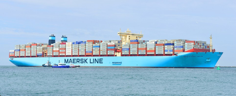 Maersl lost money in 2016 carrying shipments of export cargo and import cargo in international trade.