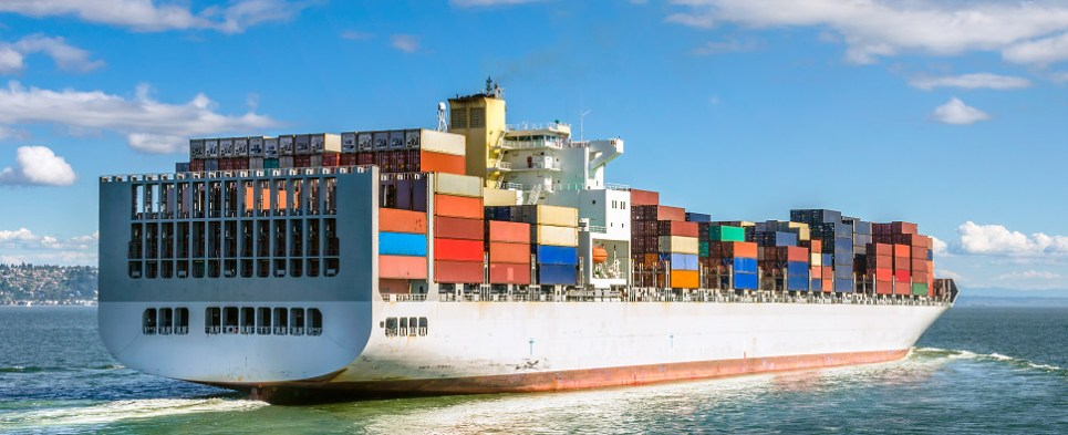 Alliances impact shipments of export cargo and import cargo in international trade.