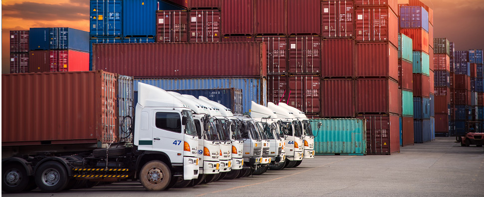 Impacts of new alliances on shipments of export cargo and import cargo in international trade.