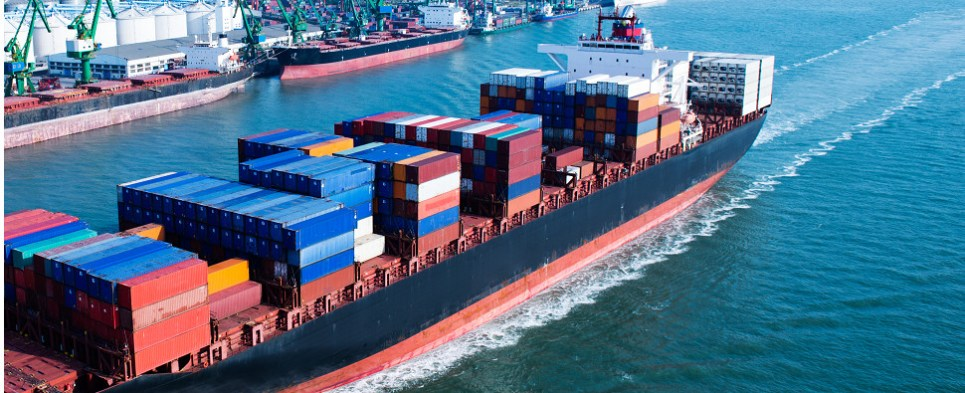 New forwarder platform handles shipments of export cargo and import cargo in international trade.