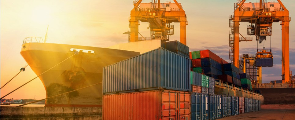 Fewer container lines are carrying more shipments of export cargo and import cargo in international trade.