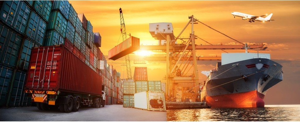 New software helps manage shipments of export cargo and import cargo in international trade.