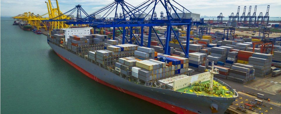 Automation is coming to ocean terminals that handle shipments of export cargo and import cargo in international trade.