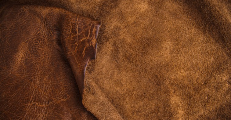equine leather