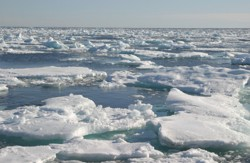 Greenland pack ice