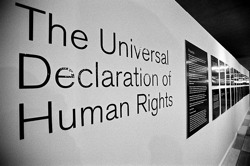 The Univsersal Declaration of Human Rights