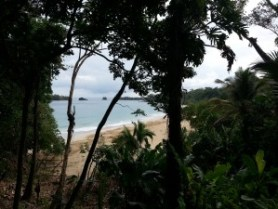 Red Frog Beach, Global Escape Hatch
