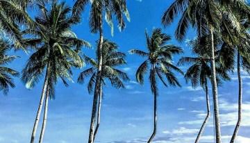 5 Astonishing Beach Resort Destinations In Lagos