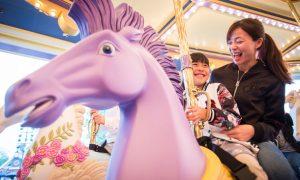 fantasia-carousel-hero-new