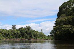 Foto 15] Surinamerivier