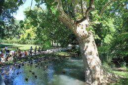 Parco Sempione (2)
