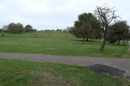 Regents Park & Primrose Hill (8)
