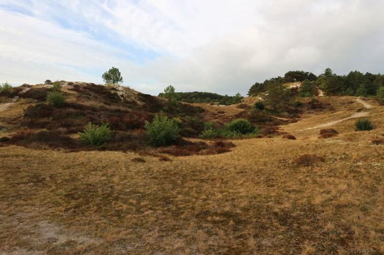 Fietsroute Schoorlse duinen
