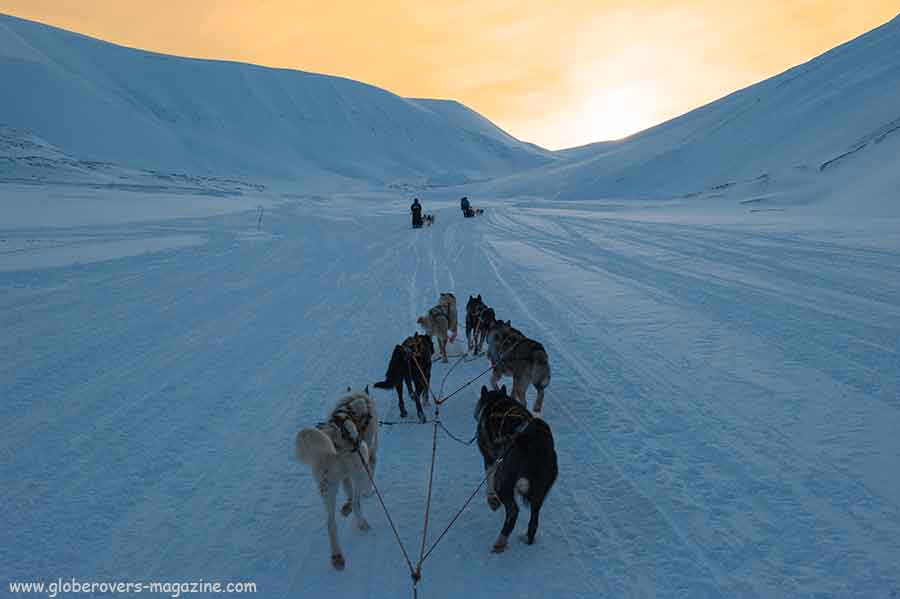Dog Sledding in Svalbard, Norway