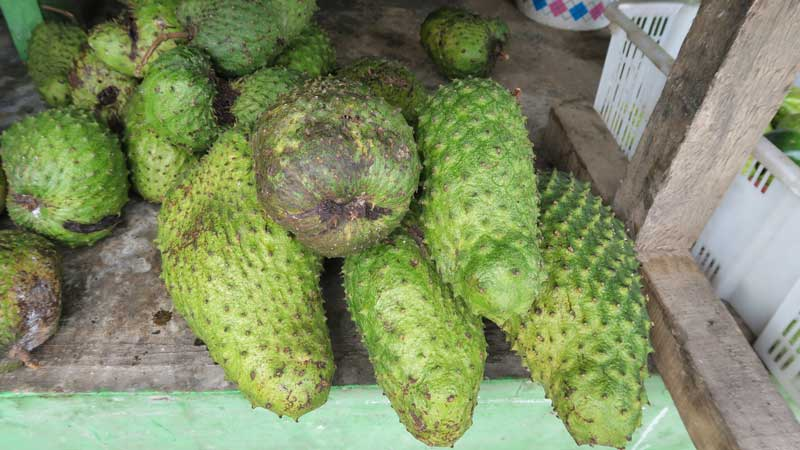 fruits, dili, timor leste, travel, indonesia