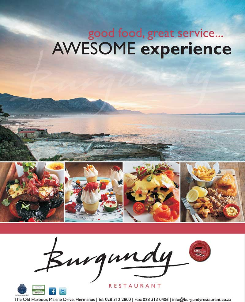 hermanus burgundy restaurant south africa