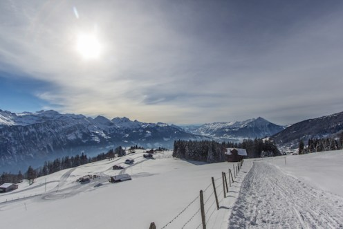 Niederhorn-Winter_Travelita