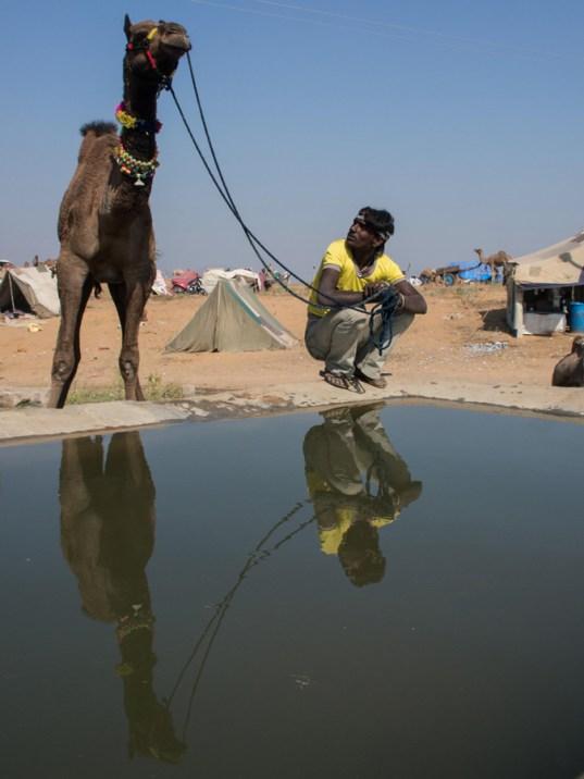 Pushkar Kamelmesse Indien-16