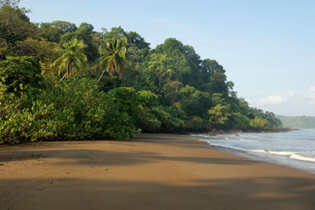 Corcovado Tour Costa Rica