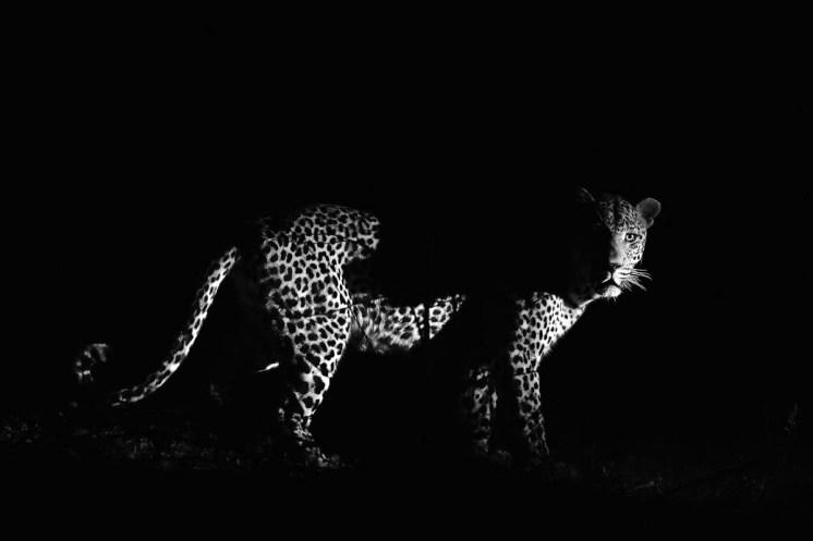 Nikon Fotoreisen Sambia Namibia Lorenz Fischer