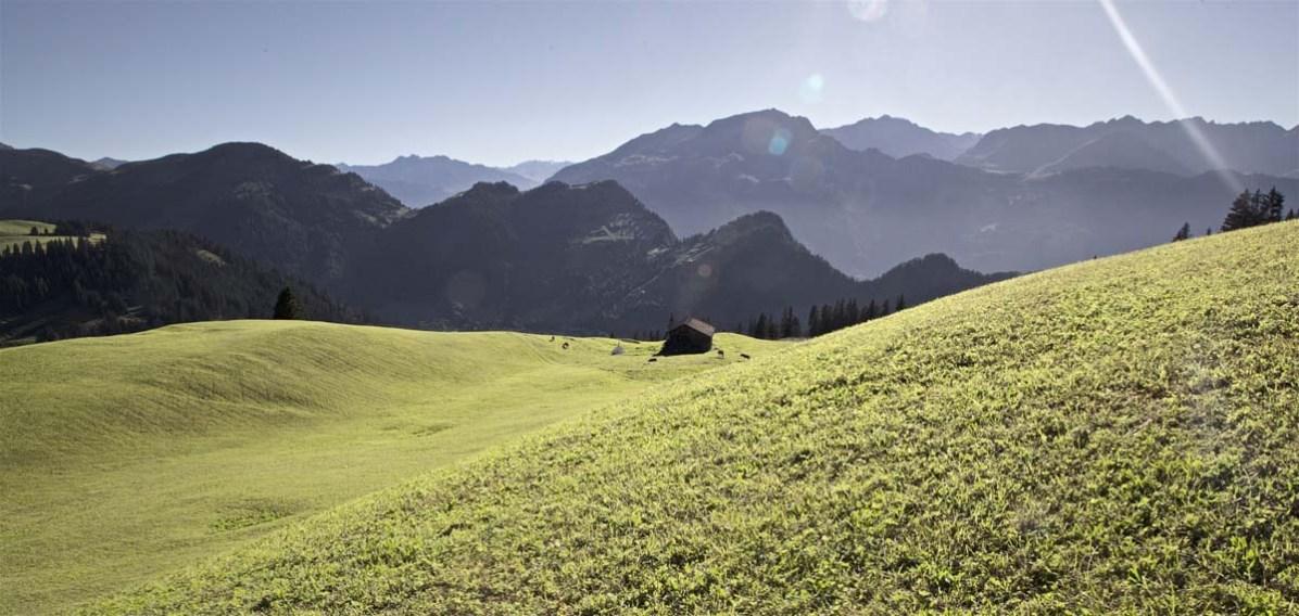 Ferien auf der Alp Rona Praettigau - 21