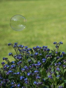 Seifenblase im Frühling