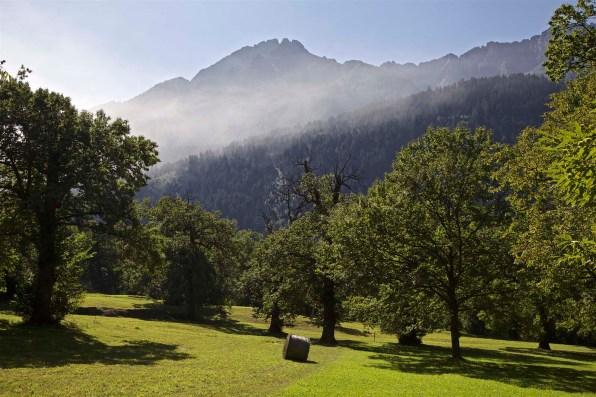 Fernwanderung Schweiz Via Bregaglia 46