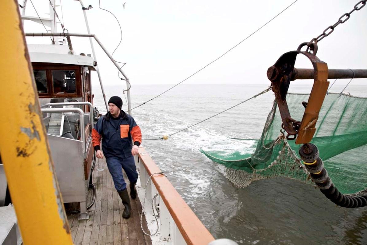 Die Nordsee Krabbenfischerei 07
