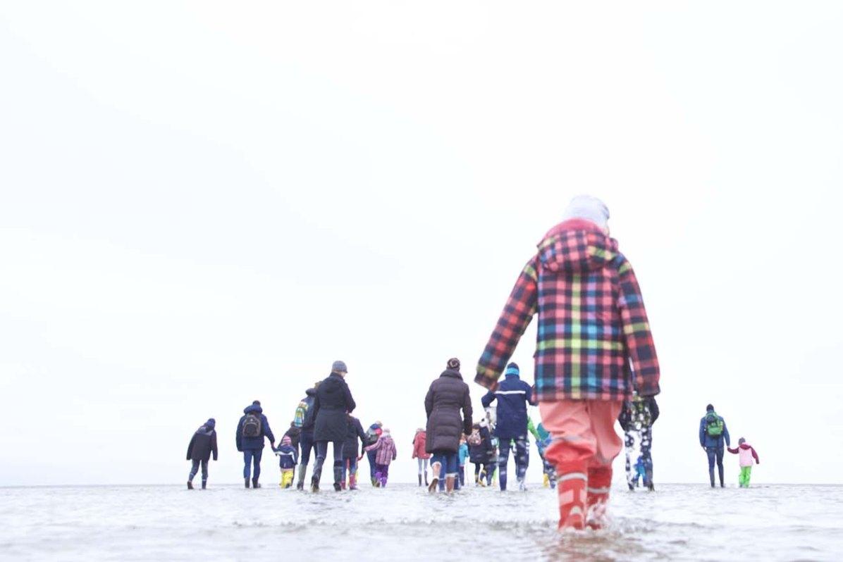Die Nordsee Kueste Wattwandern 04
