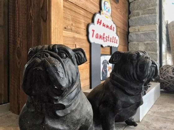 Hundefreundlichkeit im Astoria Seefeld