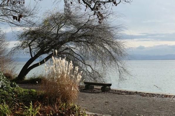Bodensee Winter Reisetipps 20