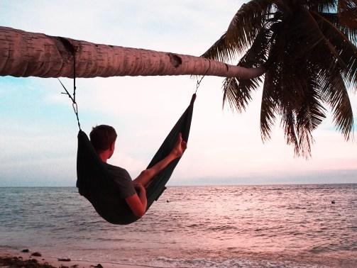 Colgar hamaca en palmera