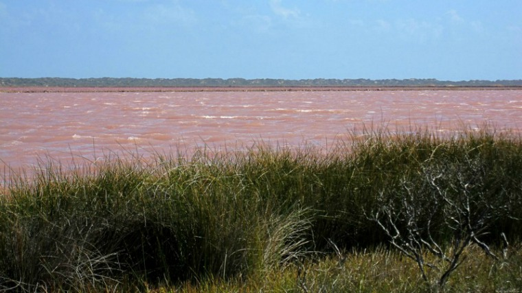 The Most Beautiful Places in the World - Pink Lake Australia