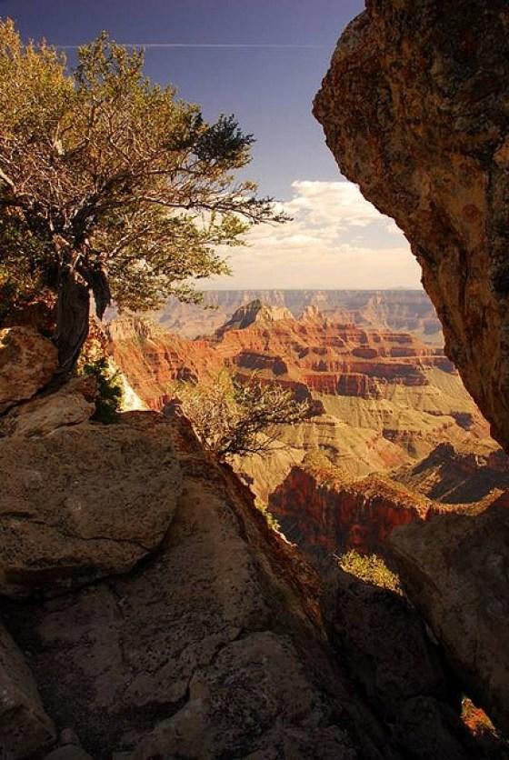 Grand Canyon north rim1