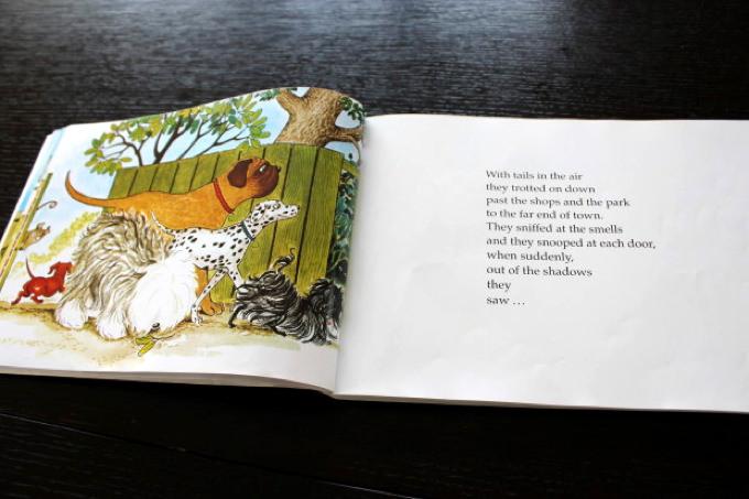 Hairy Maclary book(もしゃもしゃマクレリーの英語絵本)