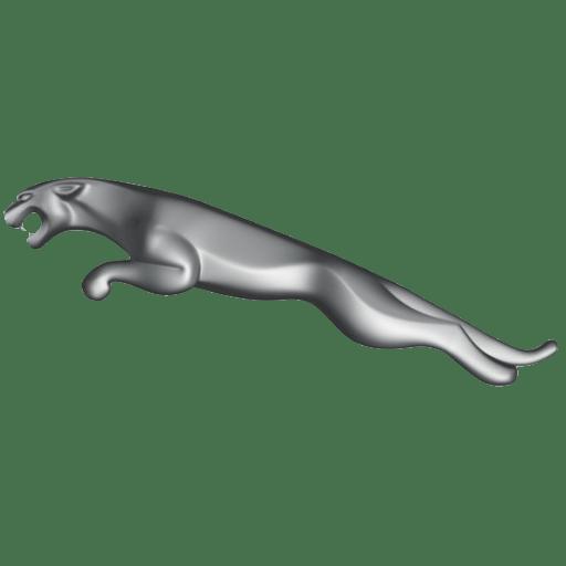 Jaguar logo, to reflect the importance of branding.