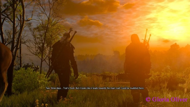 Witcher 3 - dawn on the first day of the game