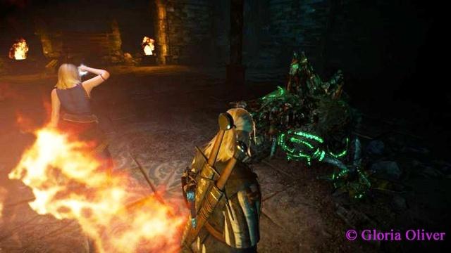 Witcher 3 - elemental guardian
