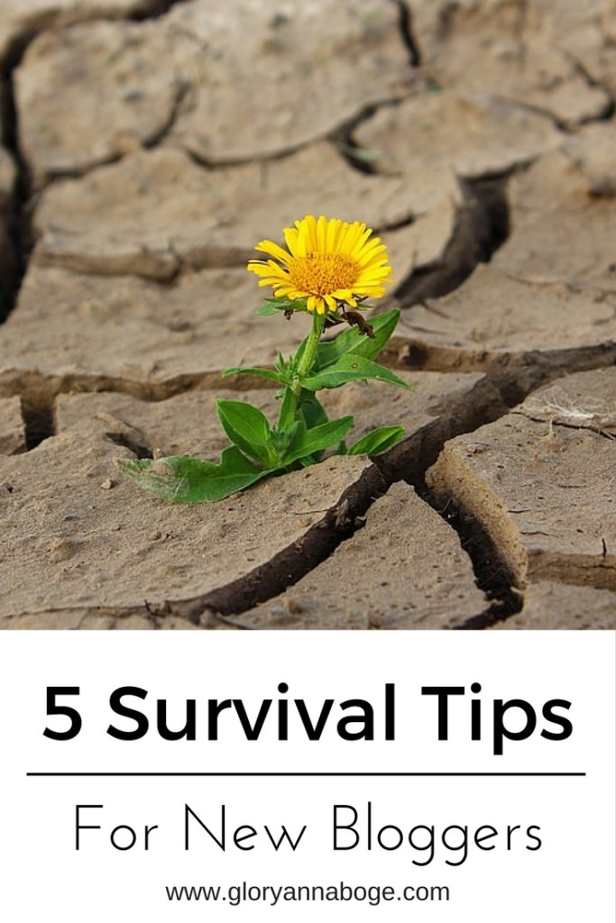 5 Survival Tips for New Bloggers. Blogging advice for new bloggers.
