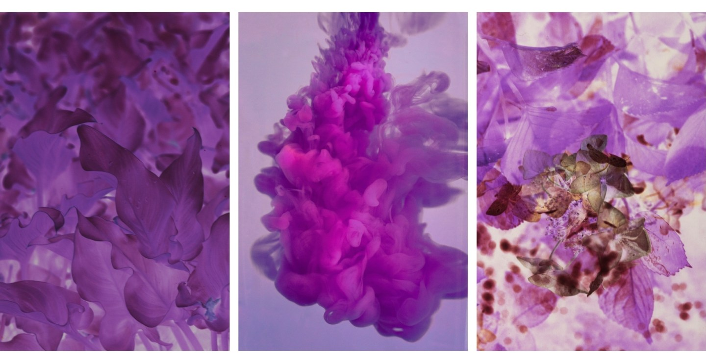 Free HD Purple Wallpapers For iPhone