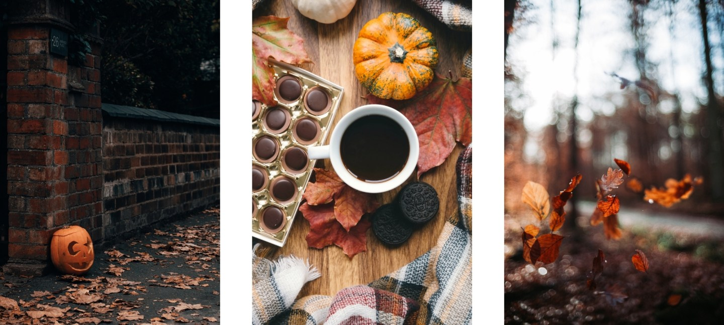 Free HD Fall Wallpaper Backgrounds For iPhone