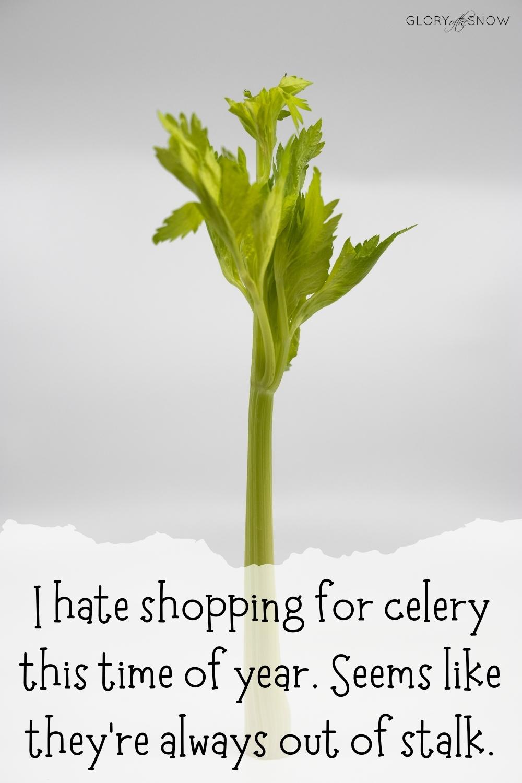 celery puns