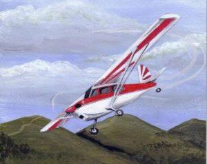 aircraft-training-pilot