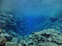 Hallvik - Diving